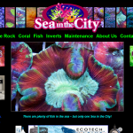 I think this website really captures the unique beauty of Sea in the City's amazing aquariums and sea life. Quite an unmistakable look.